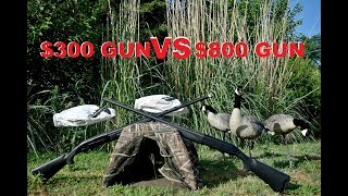 Best Duck and Goose Shotgun for the MONEY? Waterfowl Hunting for Beginners