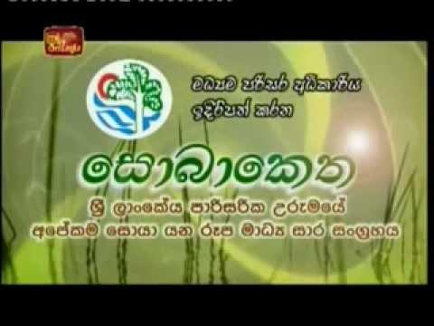 HelpoEcogreen - SriLanka Renewable Energy Company - ITN SobaKetha 2012 Programm