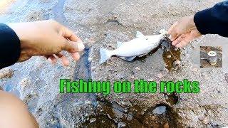 Fishing on the rocks || Pesca en las rocas con caña y carnada ( marucha, napes )