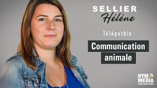 Espace Thérapeutes : Hélène Sellier