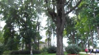 видео музей заповедник и с тургенева спасское лутовиново