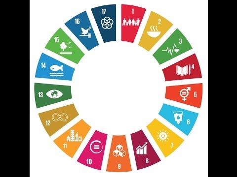 SDG Garden in numbers, Uzbekistan