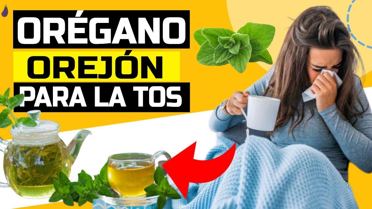 Té de Orégano Orejón Para La TOS ♥ ¿OREGANO OREJON Para Que Sirve? (oregano orejon)