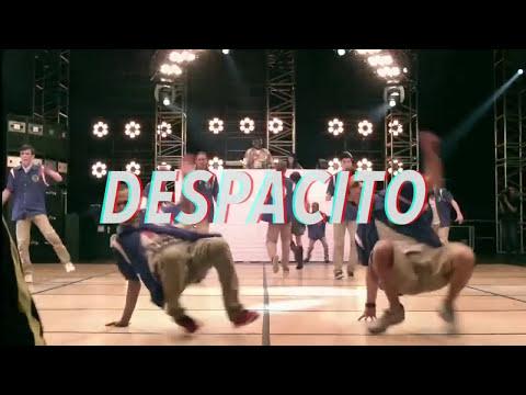 Chapahalls do Brasil - Despacito em Forró (Lyric Vídeo)
