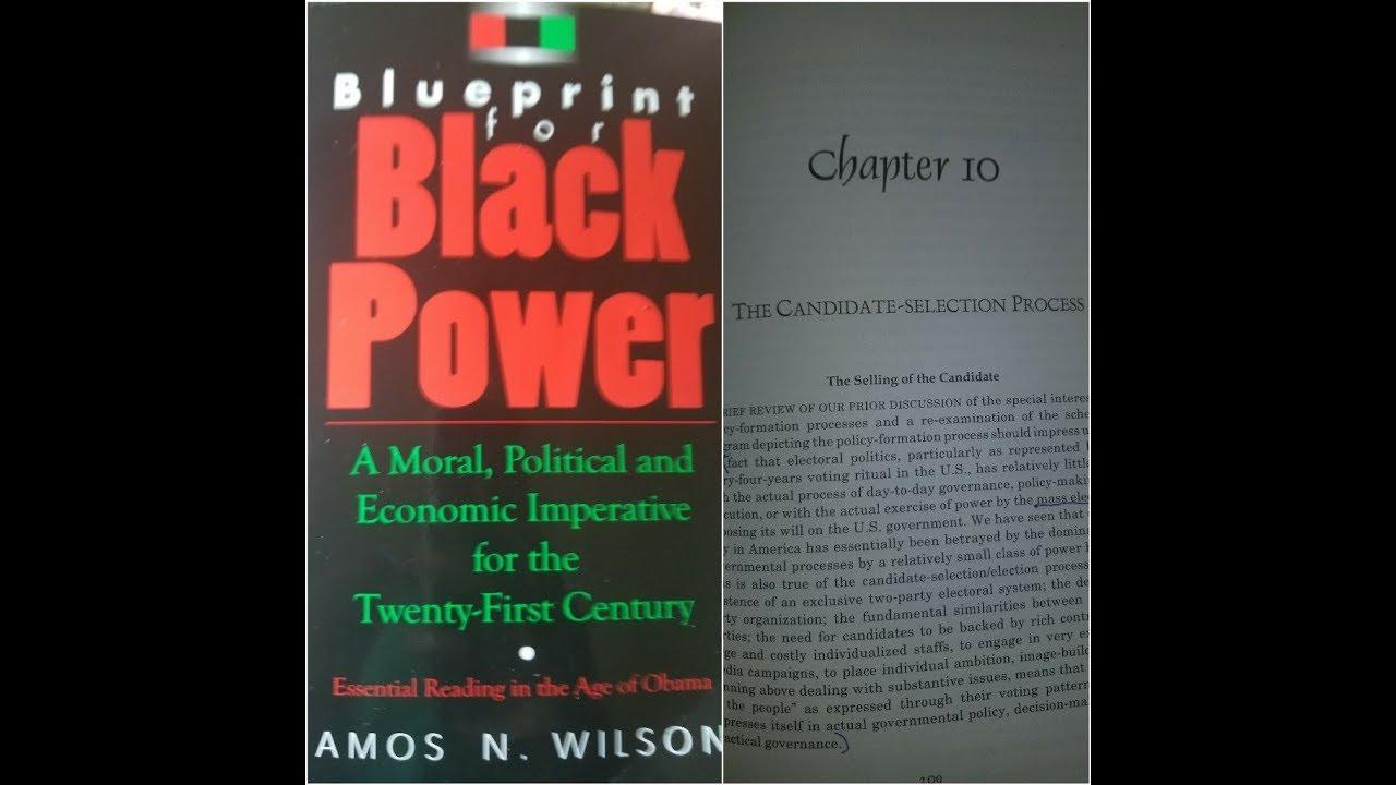 Dr amos wilson blueprint for black power chapter 10 ram bookclub dr amos wilson blueprint for black power chapter 10 ram bookclub malvernweather Gallery