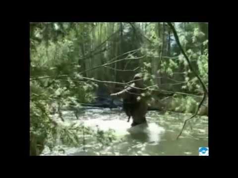 Клип Юрий Визбор - Люди идут по свету
