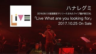 ハナレグミ / Live What are you looking for