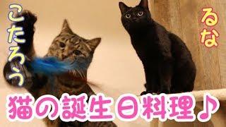 猫の誕生日と誕生日料理の紹介動画です♪ 10月22日はこたろうとるなの兄...