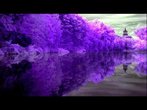Adult Swim Bump - Purple Dreams 4