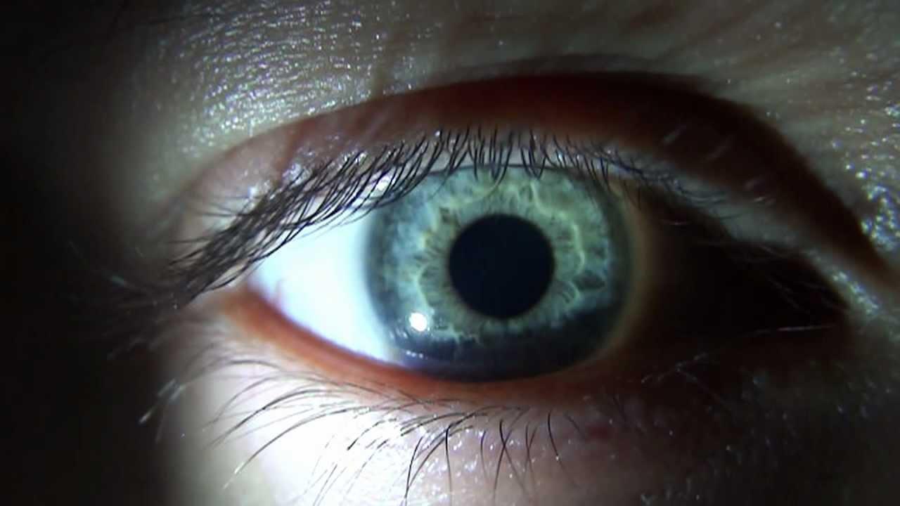 blink of an eye motion