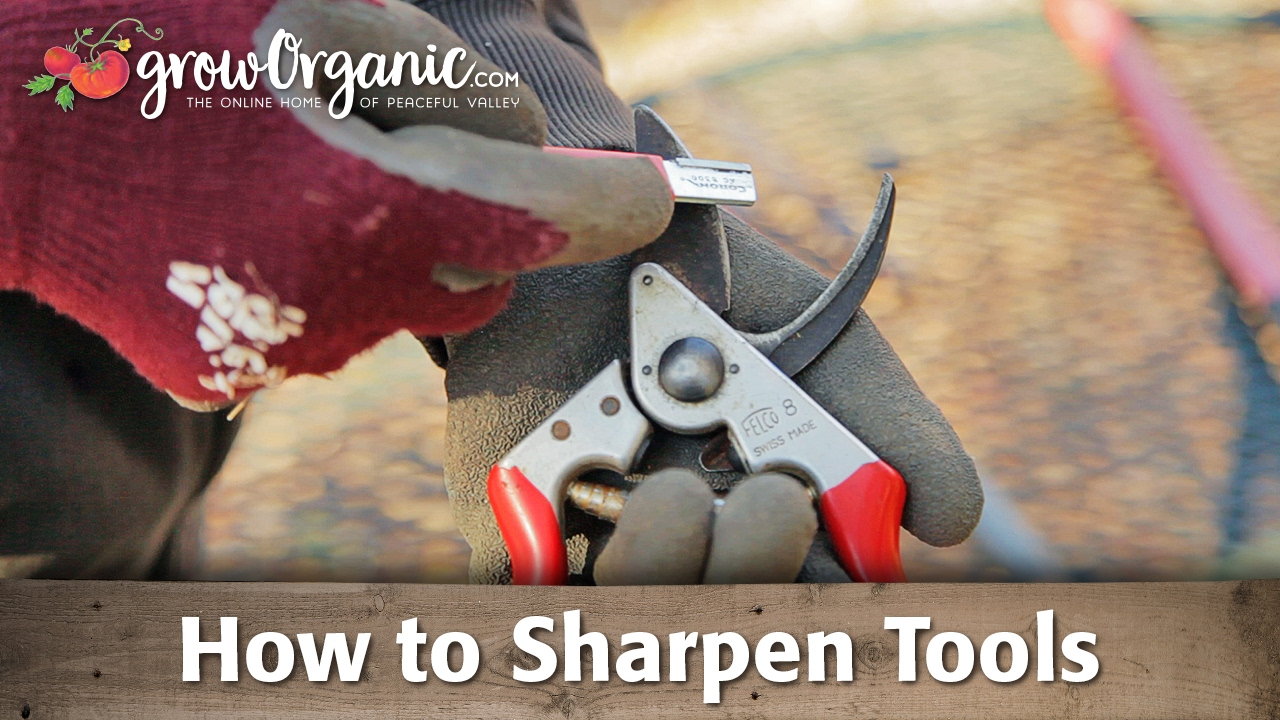 Sharpening Tools Pruners Loppers Shovels and More YouTube