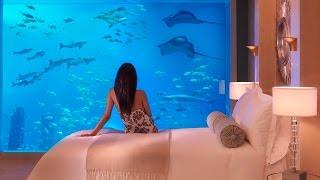 Самый дорогой отель Атлантис изнутри! Atlantis the Palm! Dubai!(Волшебный мир моими глазами! На этом канале вы увидите разные уголки планеты, снятые мною и не только! Загад..., 2015-04-05T21:12:48.000Z)