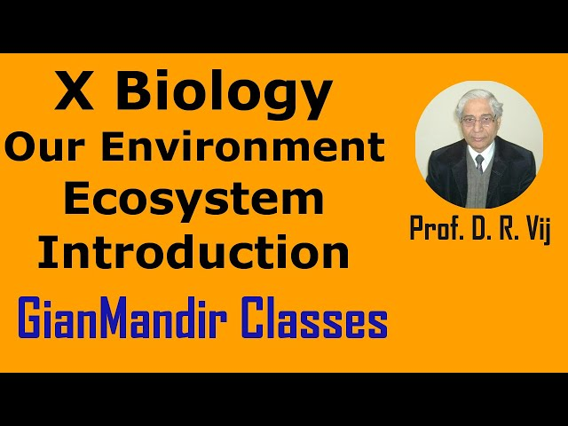 X Biology | Our Environment | Ecosystem | Introduction by Manjit Ma'am