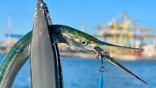 Ловля саргана на пилькер Морская рыбалка КОНКУРС