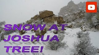 Snow at Joshua Tree Natl. Park! - Fiberglass RV Living
