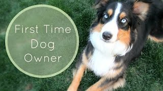Tips For First Time Dog Owners  Life With Aspen 