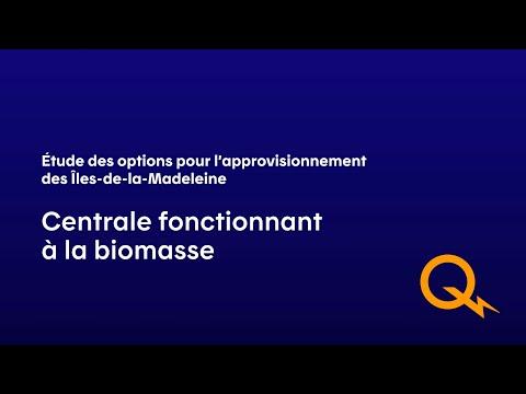 Production thermique à la biomasse forestière
