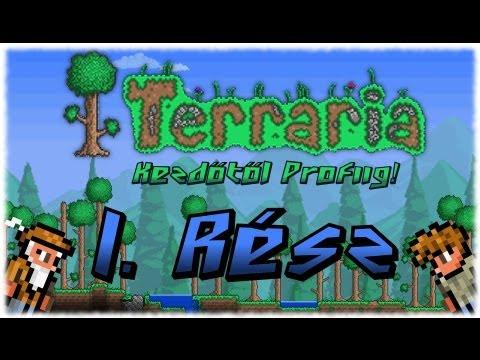 Terraria 1.1.2 (hun) 1. rész - Ház építés és alapok