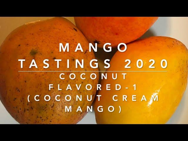 Mango Tastings 2020 - Coconut Flavored -1, Coconut Cream Mango