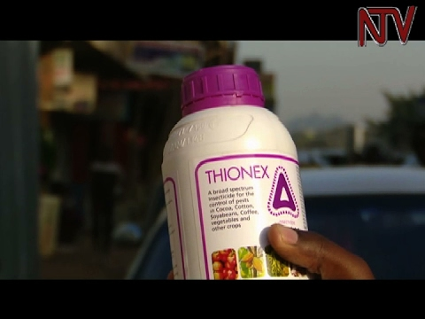 Harmful, Banned Pesticides Still Being Sold On Ugandan Market