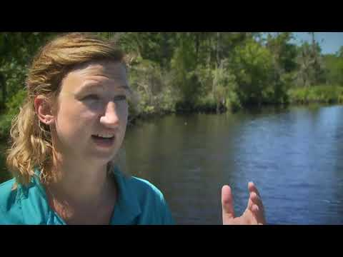 Problems On The Neuse River-
