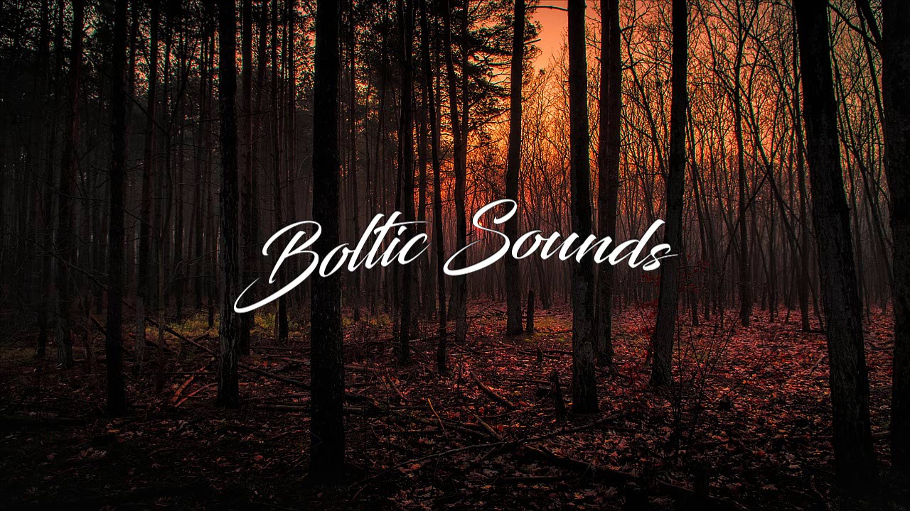 timeflies-nobody-has-to-know-boltic-sounds