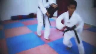 Modern Sport Taekwondo