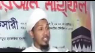 নোয়াখালির হুজুর- আঞ্চলিক ভাষায় ওয়াজ /  new waz afsari noakhali