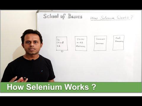  -school-of-basics- -selenium-interview-questions- -how-selenium-works- -selenium-architecture- 