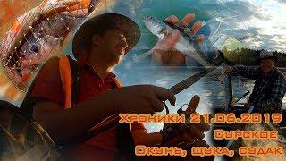 Хроники. Рыбалка 21.06.2019 Сурское. Ловля окуня, щуки и судачков.