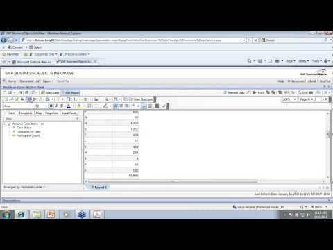 Business Objects Report Writing Orientation