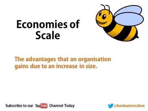 Bee Business Bee Economies of Scale Tutorial