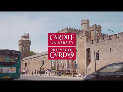 Cardiff University International Summer School 2017