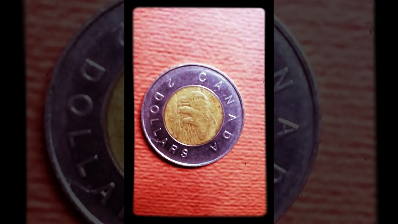 2 DOLLAR COIN OF ELIZABETH , l l , D G  REGINA , COIN OF CANNADA YEAR OF  (1996)
