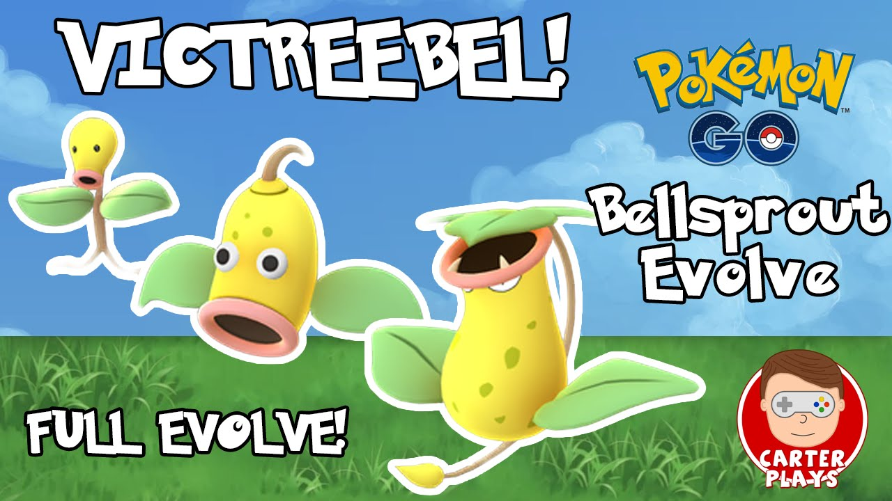 BELLSPROUT FULL EVOLVE TO VICTREEBEL - POKEMON GO ...