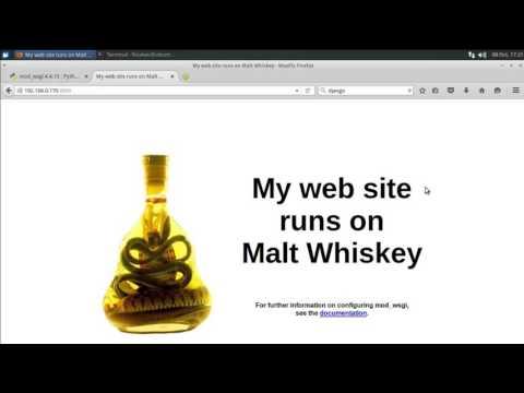mod_wsgi-express on Ubuntu server with python bottle tutorial
