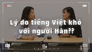 (Choáng) Người Hàn học chửi bằng tiếng Việt?