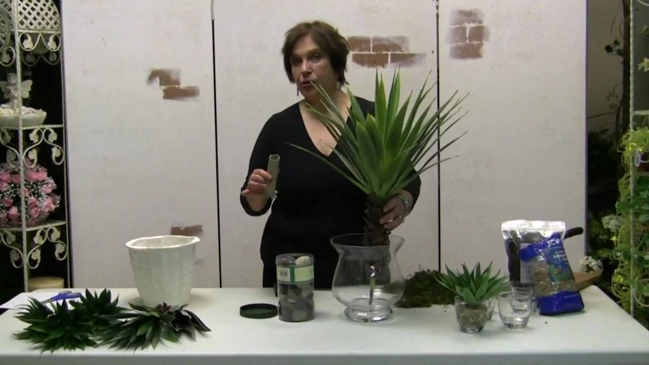 How to make a desert agave floral in a glass vase youtube how to make a desert agave floral in a glass vase reviewsmspy
