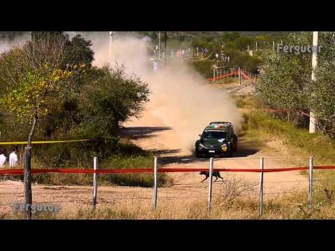 WRC Rally Argentina 2015 Lorenzo Bertelli evita pisar un perro - Avoids run over a dog