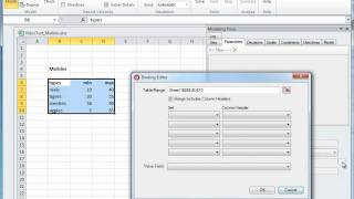 Modeling with Excel Solver Foundation 3.0 - Demo