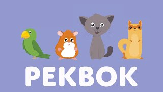 Pekbok Med Djur | Lär Dig Djurens Namn och Läten | Barnens ABC | Utbildande Barnprogram