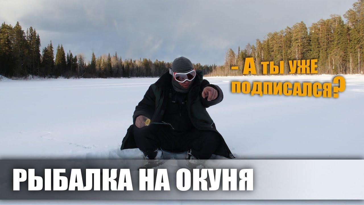 ТРОФЕЙНАЯ РЫБАЛКА НА ОКУНЯ / ТАЁЖНАЯ ИЗБА / ТРОИЦКО-ПЕЧОРСКИЙ РАЙОН