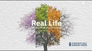 Real Life - In Despair - Tim Holt - 8/13