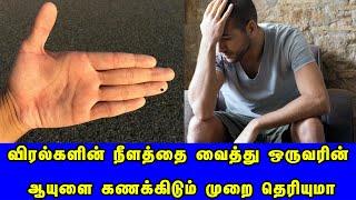 விரல்களின் நீளம் நம் ஆயுளை கணக்கிடுமா? | Hand Finger Astrology | Britain Tamil Bhakthi