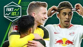 Fakt ist..! Dortmund unschlagbar! Hannover feuert Trainer! Bundesliga Rückblick 19. Spieltag 18/19
