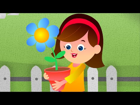 Mary Mary Quite Contrary | Nursery Rhyme