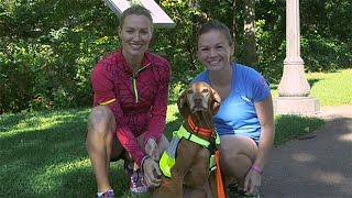 Video 5 Tips for Running With Your Dog download MP3, 3GP, MP4, WEBM, AVI, FLV November 2017