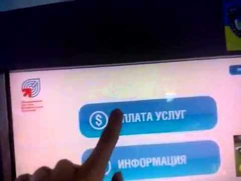 Пример: Как пополнить счет (кошелек) WebMoney через терминал в Украине