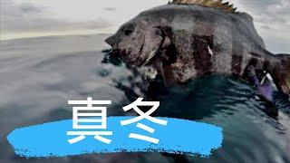 ブログも見てね!この日の 関西お魚突き http://ameblo.jp/osaka-osakan...