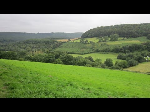 Hackness Country Walk Scenery - North Yorkshire Walks - Tour England Walking Holidays UK